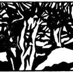 Linolschnitt mit Kopfweiden von Max Holst: Malerei für Öl-und Acryl-Bilder, Gemälde und Porträts, Grafikdesign und handgefertigte Objekte aus der Lüneburger Heide.